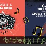 41. Capsula – Unboxing – Ziggy Stardust